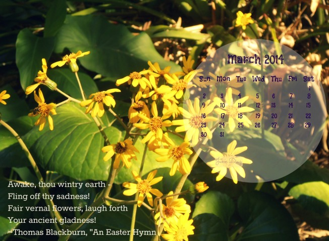 2014 Calendar1