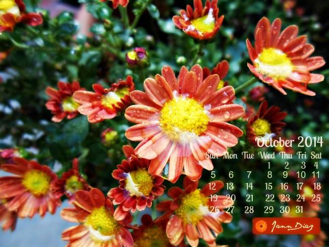 Oct. 2014 calendar