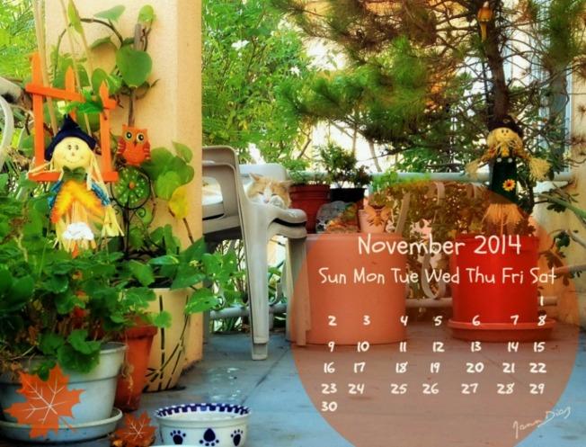 November 2014 calendar11