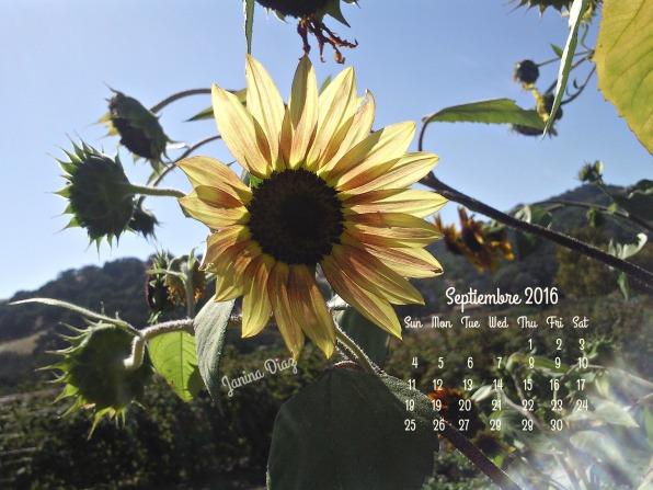 Sept. 2016 Solvang City CA