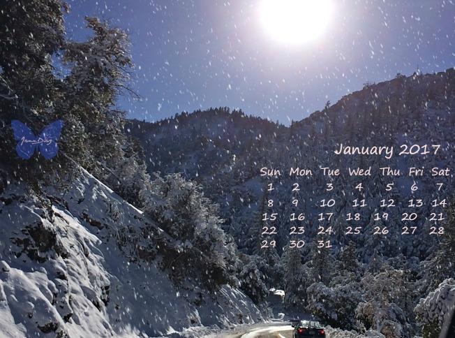 calendarjanuary-2017